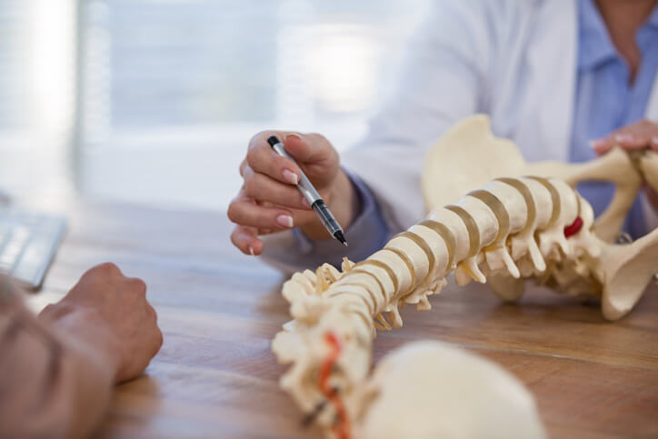 Doctor explaining anatomical spine to patient in medical office
